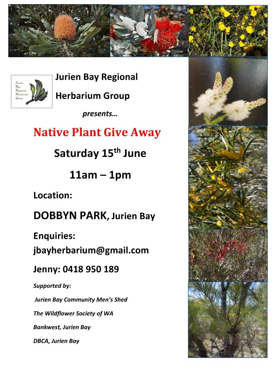 Native Plant Give Away